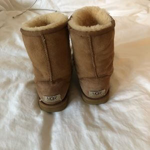 UGG Shoes - Short Chestnut Uggs